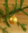 Christmas ball on fir-tree branch Royalty Free Stock Photo