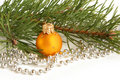 Christmas ball and green spruce branch Stock Image