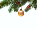 Christmas ball on green spruce branch Stock Image