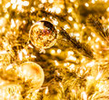 Christmas ball and green spruce branch Stock Photography