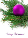 Christmas ball and green spruce branch isolated white background Royalty Free Stock Photo