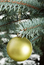 Christmas ball hanging on a tree green Royalty Free Stock Photos
