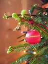 Christmas ball red small decorative on tree Royalty Free Stock Photos