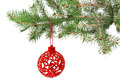 Christmas ball on the tree a white background isolated Stock Photography
