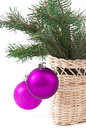Christmas balls and green spruce branch isolated white background Stock Photo