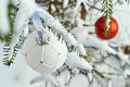 Christmas balls hanging on spruce branches Royalty Free Stock Photo