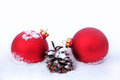 Christmas balls and pine cone in the snow two red Stock Images