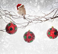 Christmas balls and sparrow bird on snowy branch with santa claus hat Royalty Free Stock Images