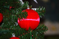 Christmas balls tree decoration red ball from in green background Stock Images