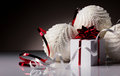 Christmas bals with gift box white and white bright red and white ribbon on grey and dark background Stock Images