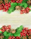 Christmas berries and spruce branch with cones Stock Photos
