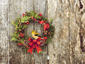 Christmas bird wreath with natural decorations with a beautiful american goldfinch perched hanging on a rustic wooden wall with Stock Photography