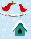 Christmas birds card Stock Images