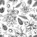 Christmas botanical seamless pattern. Hand drawn vector