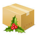 Christmas box icon. Mistletoe Stock Photography