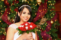 Christmas Bride Stock Photos