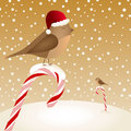 Christmas card with birds sitting on candy canes Royalty Free Stock Photos