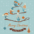 Christmas card and happy new year greeting with cute owls in winter caps sitting on branches cartoon style Stock Image