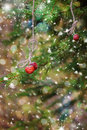 Christmas card with strawberries on a spruce branch. Snow. Royalty Free Stock Photo