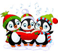 Christmas carolers penguins three cute Stock Image