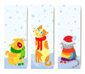Christmas cats Royalty Free Stock Photo