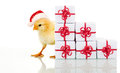 Christmas chicken with presents Royalty Free Stock Photo