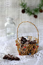 Christmas chocolate cookies tree in a gold basket on a white background decoration fir branch with fir Stock Photo