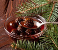 Christmas confiture from fir cones the in dish closeup Stock Photography