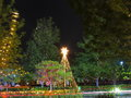 Christmas decoration australian summer night long exposure shot of in a park with a car passing by Royalty Free Stock Photography