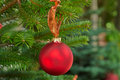 Christmas decoration balls on a tree beautiful red golden festive Stock Photos
