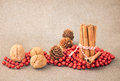Christmas decoration cinnamon and walnuts with Royalty Free Stock Image