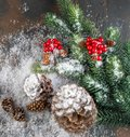 Christmas Decoration greeting card- Snowy Pine Cones On Fir Branch With Christmas Lights Royalty Free Stock Photo