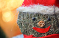 Christmas decoration macro photo of a with blurred background of lights Royalty Free Stock Photography
