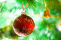Christmas decoration red ball on tree Royalty Free Stock Photos