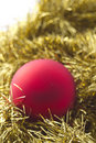 Christmas  decoration : Red and gold Royalty Free Stock Photo