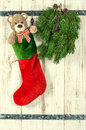 Christmas decoration. Red stocking, Teddy Bear and green pine tr Royalty Free Stock Photo