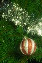 Christmas decoration with shiny glare Stock Photography