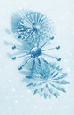Christmas decoration snowflakes Stock Image