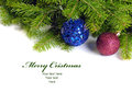 Christmas decoration two balls with pine tree Stock Images