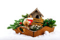 Christmas decorations: bird, birdhouse and fir tree branches Royalty Free Stock Photo