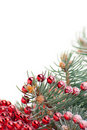 Christmas decorations with branch of tree on white Stock Image