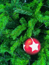 Christmas decorations hanging on tree Stock Photos
