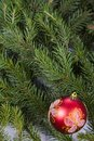 Christmas decorations on spruce branches.