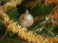 Christmas decorations on tree Stock Photography