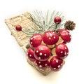 Christmas decorative mushrooms over white background Royalty Free Stock Photo