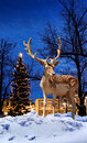 Christmas deer small town xmas tree background Stock Photography