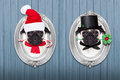 Christmas dog as  santa claus and chimney sweeper Royalty Free Stock Photo
