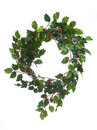 Christmas door garland Royalty Free Stock Photography
