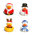 Christmas Ducks Royalty Free Stock Photos