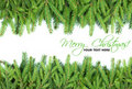 Christmas fir tree frame design elements Royalty Free Stock Photo